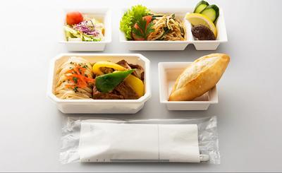 Vegetarian Oriental Meal All Nippon Airways