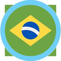 Brazil round flag blue border