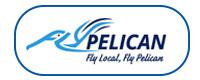 FlyPelican logo