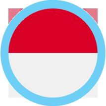 Monaco round flag