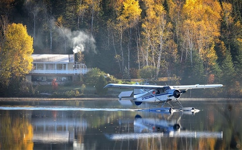 Seaplane landing in water surrounded by trees