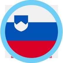 Slovenia icon round blue border