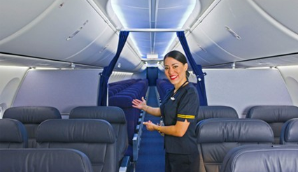 An image of the interior of the Boeing 737 Max, with flight attendant