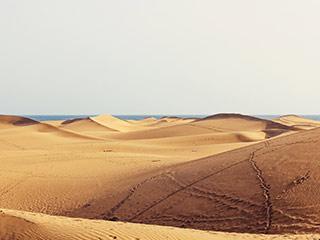 lanzarote sand dunes