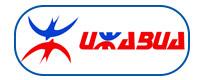 Izhavia Logo